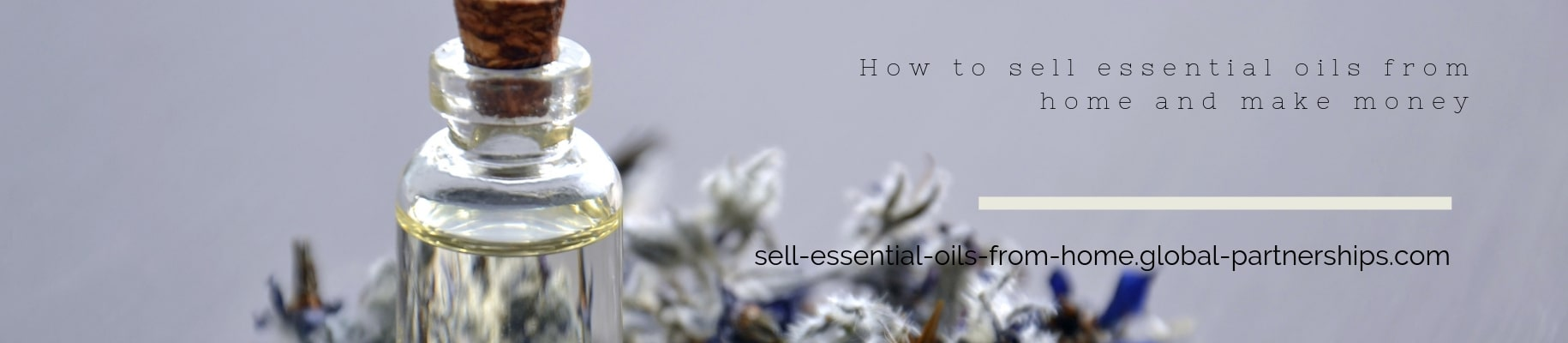 How to sell essential oils from home and make money